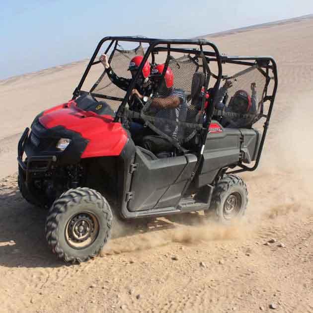buggy-safari
